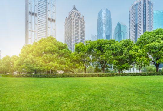 Bioedilizia: accordo Ubi Banca e Federlegno per imprese filiera del legno