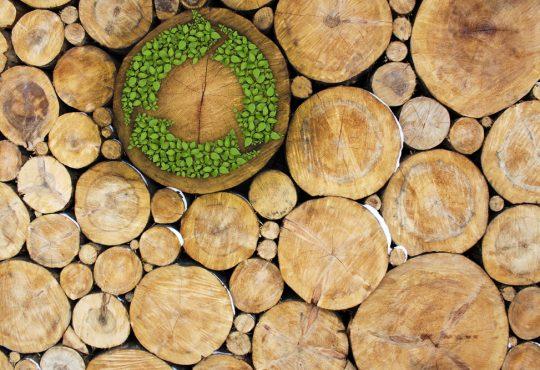 Economia circolare: partiamo dall'energia - teleriscaldamento a biomassa