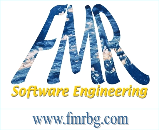 Fmr Software Engineering
