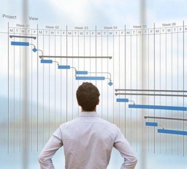 Ingegneria gestionale: dove lavorano gli ignegneri gestionali?